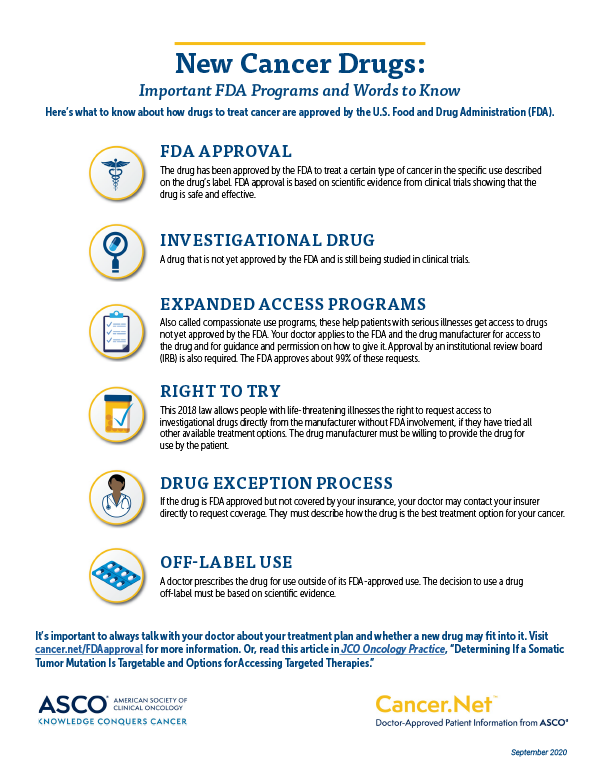 Image of infographic about FDA drug programs and words to know. Access the full-size PDF to read.