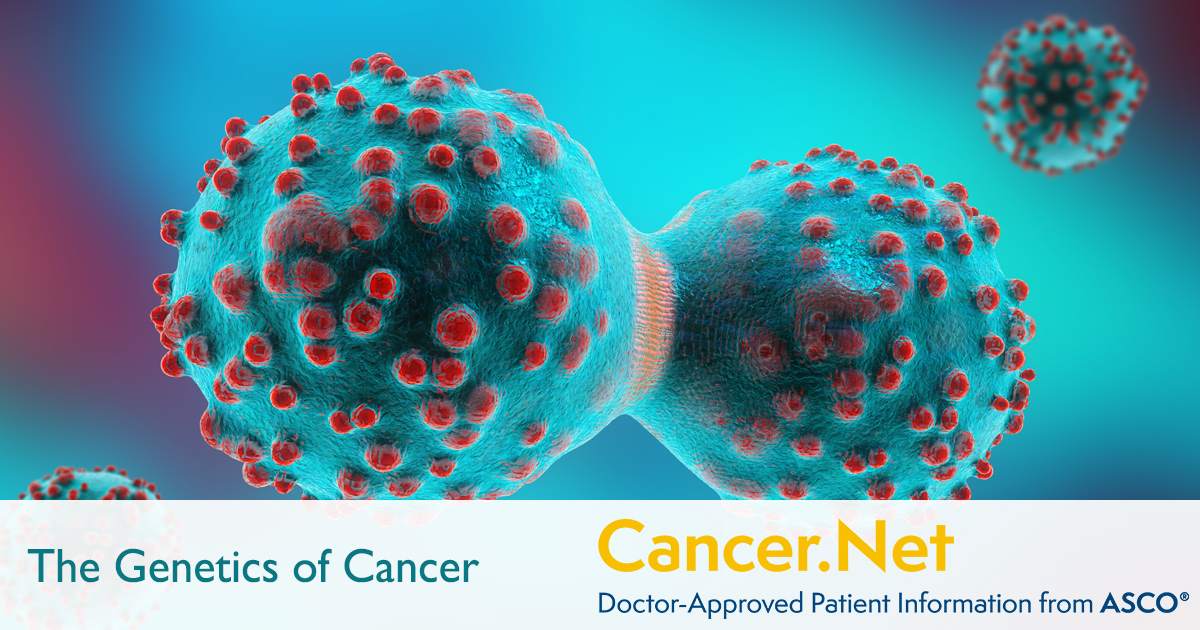 The Genetic Makeup Of An Organism Stunning The Genetics Of Cancer CancerNet