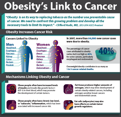 Obesity Weight And Cancer Risk Cancer Net