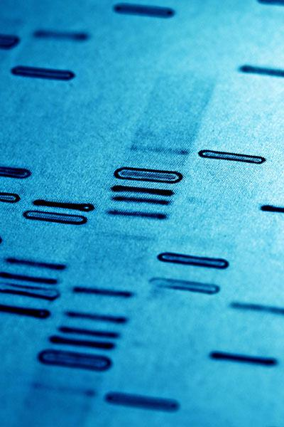Blue background showing DNA sequencing lines