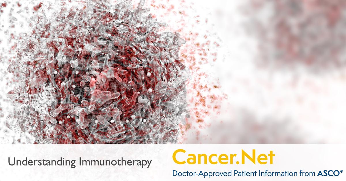Understanding Immunotherapy | Cancer Net