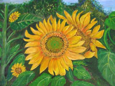 Sunflowers (Hamaniyot), by Michal Dahan