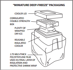 Miniature Deep-Freeze Packaging: A corrugated double-strength box, placed on top of plenty of wrapped dry ice, packed in a reusable insulated cooler with a lid, with 2.75 mils-thick polyethylene film used as a final layer of insulation and protective shrink wrap