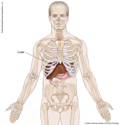 view all pages | cancer, Sphenoid